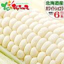 【予約】北海道産 とうもろこし ホワイトショコラ (6本) 白 生 甘い コーン スイートコーン フルーツコ...