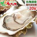 カキ 北海道産 殻付きカキ (1個 約110g-130g×2...