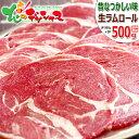 ラム肉 ジンギスカン ラムロール 500g (ショルダー/スライス/500g×1袋/冷凍品) 同梱 自宅用 人気 ロール肉 ラムロール肉 ラムスライス じんぎすかん ラム 肉 羊肉 BBQ 焼肉 グルメ 北海道 お取り寄せ