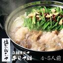 【塩とんこつ】博多もつ鍋 がばい 牛もつ鍋セット(4〜5人前