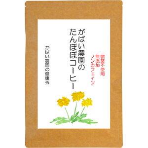 【送料無料】 手作りたんぽぽコーヒー2.5g×20包 【無農薬】【無添加】【ノンカフェイン】【無漂白ティーバック】10P01Nov14