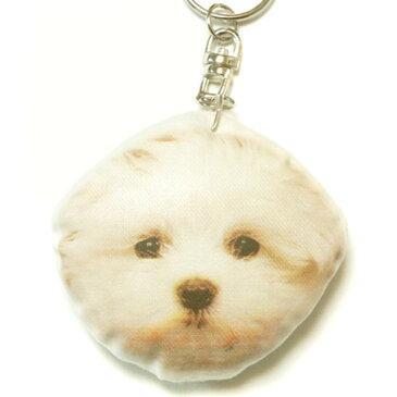 犬 キーホルダー 72 マルチーズ 【犬 ドッグ マルチーズ プリント キーリング 雑貨 グッズ 通販】【動物祭り】
