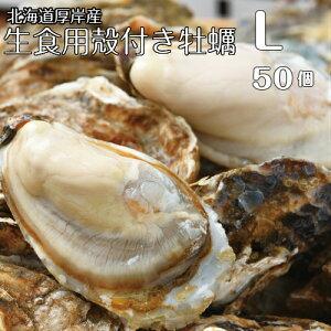 北海道厚岸産マルえもんLサイズ