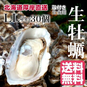 【マルえもん LLサイズ30個】北海道厚岸産本養殖牡蠣生食用