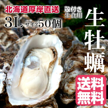 【マルえもん 3Lサイズ50個】北海道厚岸産本養殖牡蠣生食用