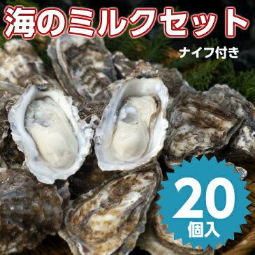 【海のミルクセット20個入】北海道厚岸産本養殖牡蠣生食用