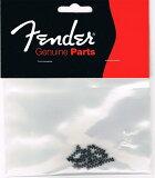 Fender トレモロテンションスプリング【フェンダー】【正規輸入品】