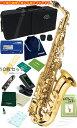 新品 アルトサックス 初心者 お手入れ セット付き AL-500 Jマイケル 送料無料 (条件付) 吹奏楽 ブラスバンド 練習用 管楽器 サックス …