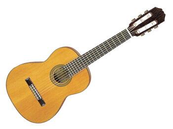 Aria(アリア)PS-48PEPE☆幼稚園~小学校低学年向けミニクラシックギターソフトケース付き【PS-48】
