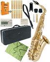 Antigua ( アンティグア ) eldon アルトサクソフォン 管楽器 サックス E♭ 管体 ゴールド お手入れセット エルドン アルトサックス セット D 北海道 沖縄 離島不可・・・
