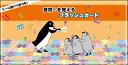 音符を覚えるフラッシュカード(PMF-003/対象年齢3〜4歳から/黒河メソッド ピアノ上達のためのソルフェージュシリーズ)