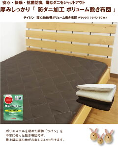 テイジン防ダニ抗菌ボリューム敷布団シングル(約100×205cm)