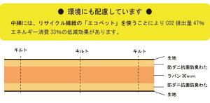 テイジン抗菌防臭軽量敷き布団シングル(100×200cm)(シングル)【送料無料】軽量帝人