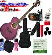 ARIA(アリア) アコースティックギター/11点セット「TG-1 SPP:シースルーパープル+小物10点」 TG1【送料無料】【smtb-KD】【RCP】:-soku-p2