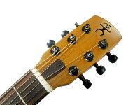 【対応】aNueNue(アヌエヌエ)BirdGuitar(バードギター)斬新デザインのアコースティックギター(セミグロス)「aNN-M10」/aNNM10【送料無料】【smtb-KD】【RCP】:-as