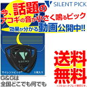PICKBOY Terry Gould / GUITAR PICK triangle 0.60mm〔GP-TG-R/06〕【50枚セット】《ピック》 【ネコポス】
