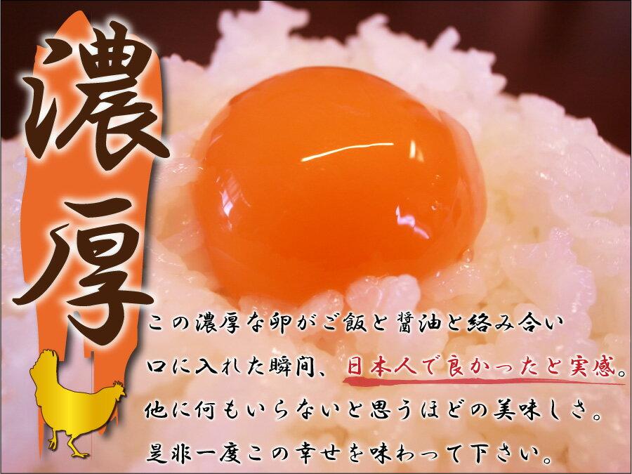 卵かけご飯セット【華】(たまごL24個、令和元...の紹介画像2