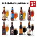 クラフトビール 8種8本 飲み比べセット <湘南ゴールド、世