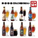 クラフトビール 8種8本 飲み比べセット <夏限定フルーツビ