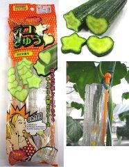 デコレーション胡瓜作り!型取りケース 家庭菜園向けきゅうりの型 デコきゅう 星とハート2本...