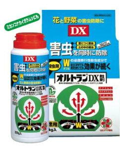 【合計3000円(税抜)以上で送料無料】次世代オルトラン!新登場 住友化学オルトランDX粒剤1kg袋