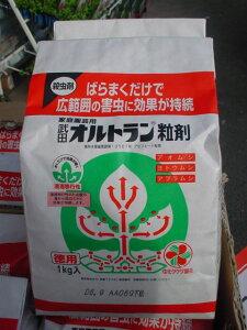 住友化学 オルトラン粒剤1kg袋