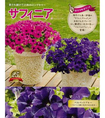 【花苗販売3月下~発送】サントリーフラワーズ サフィニア9cmポット苗