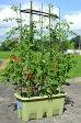 楽々菜園プランター 深型750支柱フレーム付き