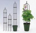 バラやクレマチスなどツル性植物にアップル ミニオベリスクB-120型BK