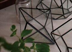 ガラスとアイアンの空間にオブジェを飾って♪小物入れにもガラステラリウム CRYSTAL 【GFGY40...