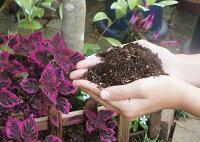 【培養土】植木屋さんのこだわりの土20リットル【観葉植物/庭木/花木/園芸/20L】