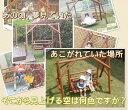 木製 ブランコ 屋外 二人用 白木 木製ブランコ 2人乗り 春休み 思い出 子供 キット 孫 誕生日 組み立て こども 家庭用 自宅用 遊具