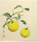 片山邦夫『柚子』色紙絵