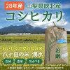 《平成28年産》八ヶ岳・大泉高原産 有機質肥料使用低農薬コシヒカリ「八ヶ岳の米 湧水」10kg [山梨県・峡北]