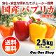 【送料無料】国産パプリカ 赤・黄・オレンジ アラカルトセット2.5kg A品(13〜15個…