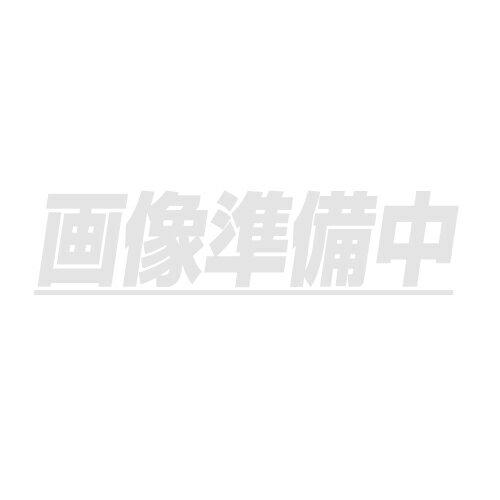日動工業 交流定電圧電源装置 SVR-3000 80-120V→100V 屋内型