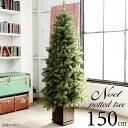 ポットツリー クリスマスツリー 150cm 樅 高級 (オーナメントなし)【ノエル】おしゃれ ヌード 北欧 足元スカート ツリースカート 足隠し 飾り スリム ornament Xmas tree・・・