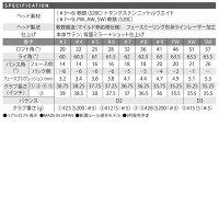【送料無料】【2016年モデル】【受注生産】スリクソンSRIXONZ765アイアン【単品】ダイナミックゴールドN.S.PROMODUS3TOUR120スチールシャフト