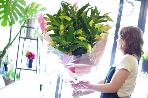 ユリ カサブランカ10本の花束 お祝い 誕生日 結婚祝い 出産祝い 記念日 歓迎 退職 お見舞い 開店...