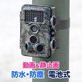 防犯カメラ(トレイルカメラ・不可視赤外線・屋外・防水・車・玄関・防犯・セキュリティ・電池式・監視カメラ・SDカード録画・取り付け簡単・目立たない)