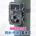トレイルカメラ 防犯カメラ 赤外線LED 屋外 防水 小型 暗視 動体検知 防犯 セキュリティ 電池式 監視カメラ SDカード録画 目立たない EEX-CAM01