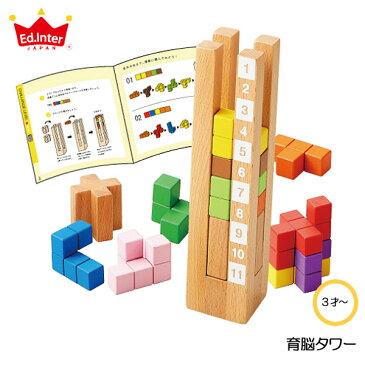 【送料無料】 育脳タワー エドインター 立体パズル 知育玩具 木製玩具 脳力パズル 知育パズル プレゼントに最適