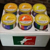 ジェラート専門店ジェラテリアUNOの愛媛産高級柑橘ジェラート6個セット