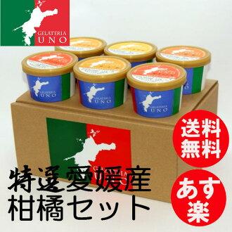 意式霜淇淋 gelato 霜淇淋意式霜淇淋專賣店是 UNO 6 片套特別愛媛縣工業柑橘類水果什錦霜淇淋店