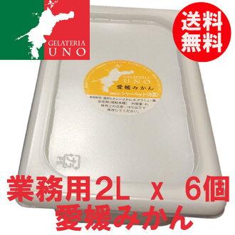 供冰淇淋專營商店jierateria UNO的愛媛橘子冰淇淋業務使用的2L6個箱子果汁冰霜