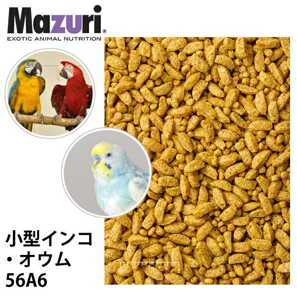 Mazuri マズリ 小型インコ・オウム スモールバードメンテナンス 56A6 フード 1kg 小鳥 ペレット エサ【JPS】