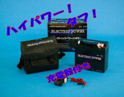 エレクトニックパワーバッテリー12V19AH