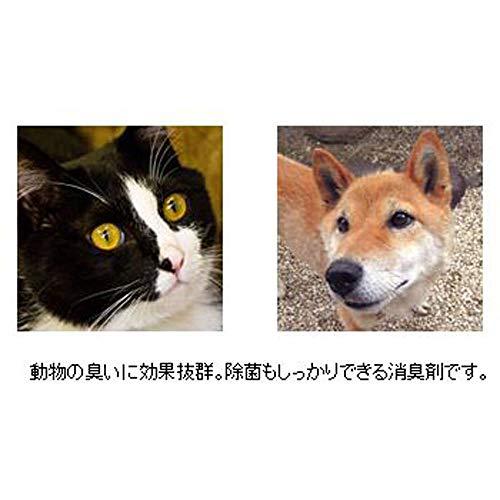 ない ペット 臭く 臭くない犬の特徴とは?具体的な犬種と臭いの原因や対処法まとめ