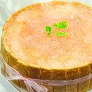 バースデーケーキ☆白桃のショートケーキ直径17cm京都二条寺町ジェニアル謹製生ケーキ白桃ピーチ桃