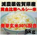 佐賀県産(減農薬)発芽玄米配合の黄金比率ヘルシー米5kg(佐賀県知事認証特別栽培米)送料無料